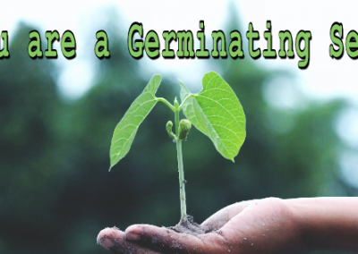 You Are a Germinating Seed