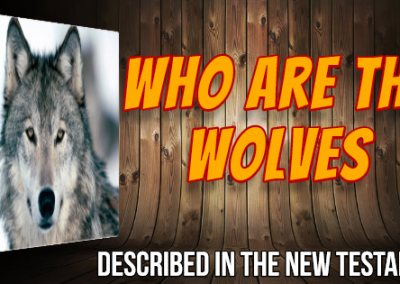 Who Are the Wolves?